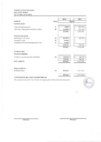 Vision21 Annual Audit Report 2012-page-012