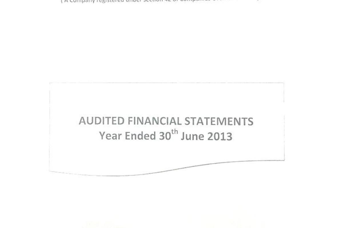 Vision21 Audit report 2013-page-001